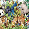 Find the Spot-Jungle Animals