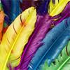 Hidden Letters-Colors