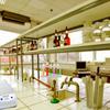 Wow Lab Room Escape