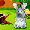 Cute Bunny Day Care A Free Education Game