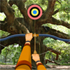 Hi hiddenogames fans, we brought a new shooting game for you called Hidden Targets-Wild Trees. In this game, you have to shoot fifteen targets within five minutes with a bow and arrows. Look precisely, because some targets are well hidden. For the last three targets you can buy a hint. Do not hesitate too long, because if you miss a target, you`ll lose a 20 seconds you may need. Have fun!