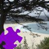 Carmel Cypress Jigsaw A Free Jigsaw Game